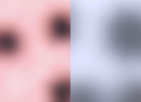 Blur CD, 2002 Pigmenttinte auf Reispapier, je 24,5 x 33,5 cm