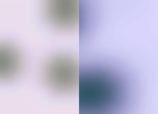 Blur GH, 2002 Pigmenttinte auf Reispapier, je 24,5 x 33,5 cm
