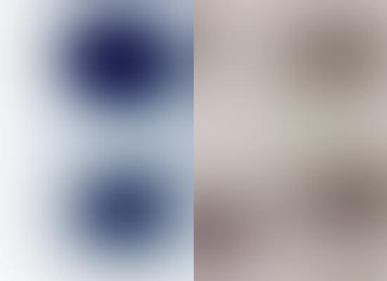 Blur IJ, 2002 Pigmenttinte auf Reispapier, je 24,5 x 33,5 cm